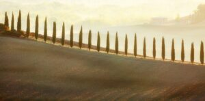 20 Points -A Tuscan Sunrise-Elizabeth Restall ARPS