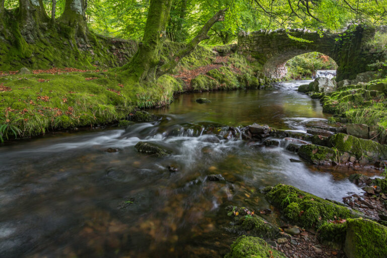 HC - Robber's Bridge, Exmoor-Elizabeth Restall ARPS