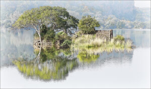16 Points-Ranthambore Reflections-Brian Wetton