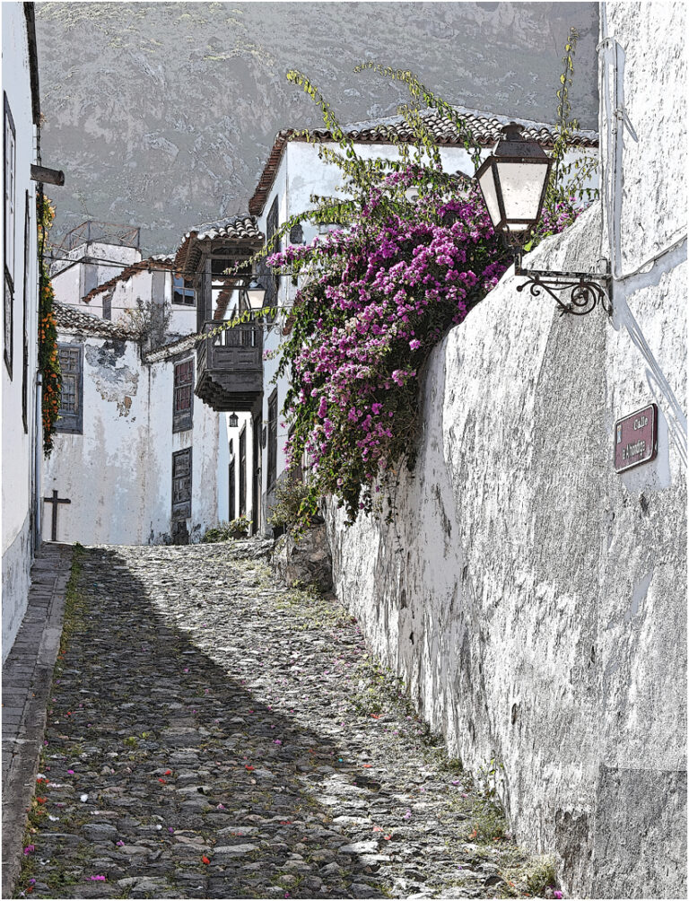 1ST -20 Points -Colourful Camino- Tenerife-Brian Wetton