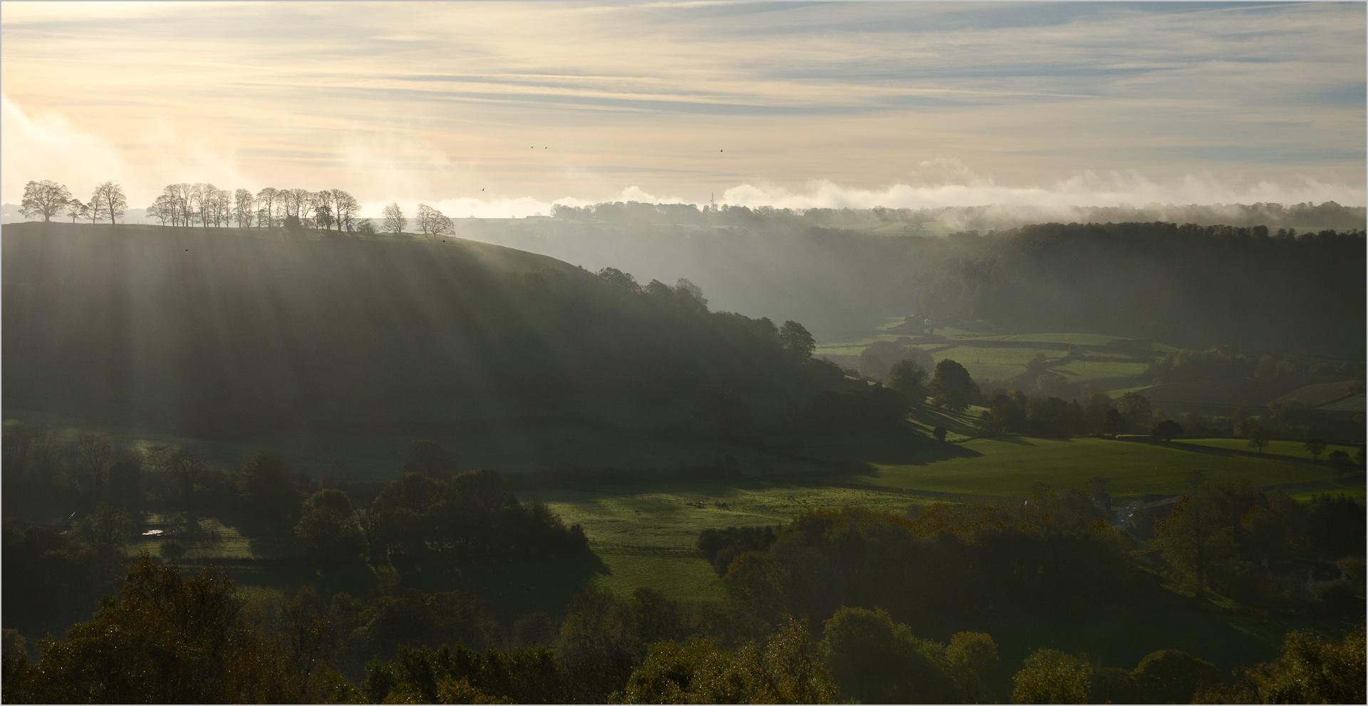 Misty Morning -Steve Daniell