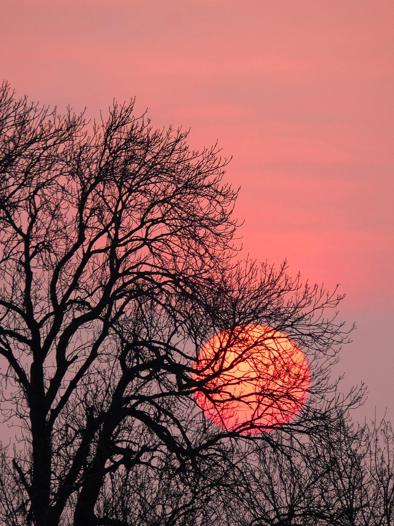 14 Points - Sunset- Bill Beere