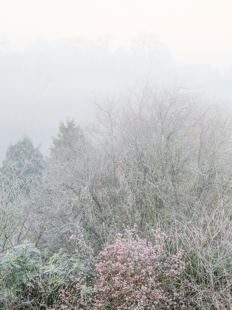 14 points - frosty morning-Bill Beere