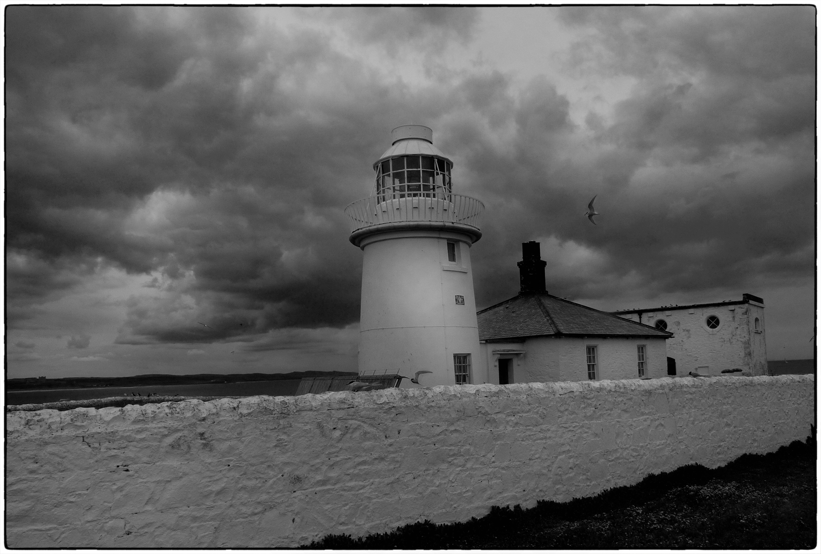 Div 1- 13 Points- farne isiand lighthouse - Mike Pritchard
