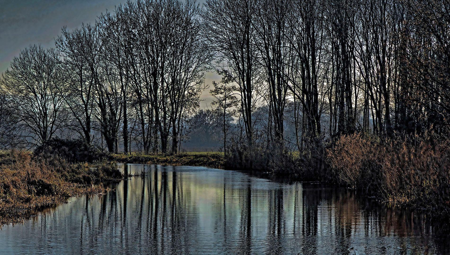 RIVER FROME AT WHITMINSTER - Christine Ryske