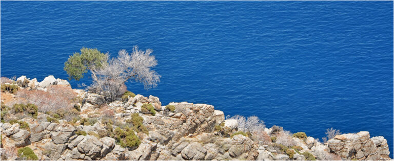 D1- The Blue Aegean-Christine Wetton