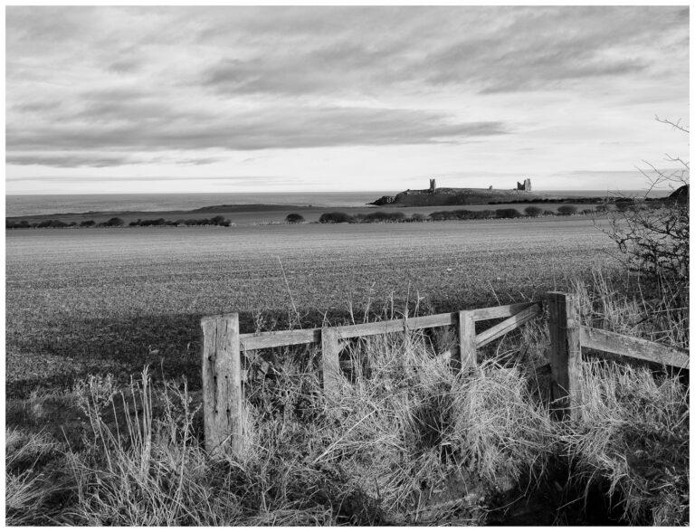 17 Points -Dunstanburgh Castle-Steve Daniell