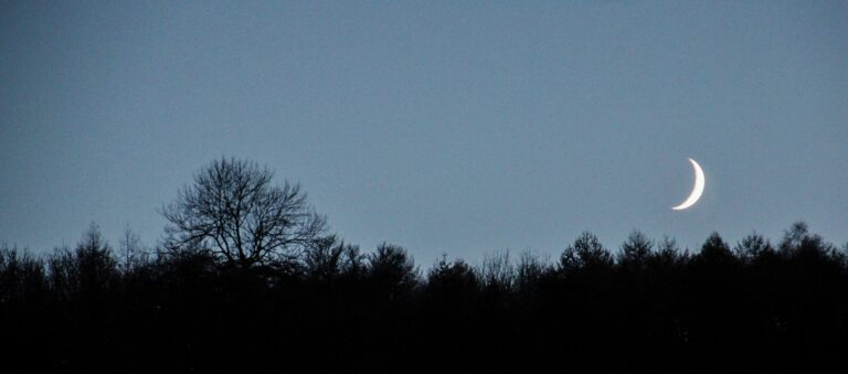 18 Points -Crescent Moon over Westridge Woods- Marjory Wright